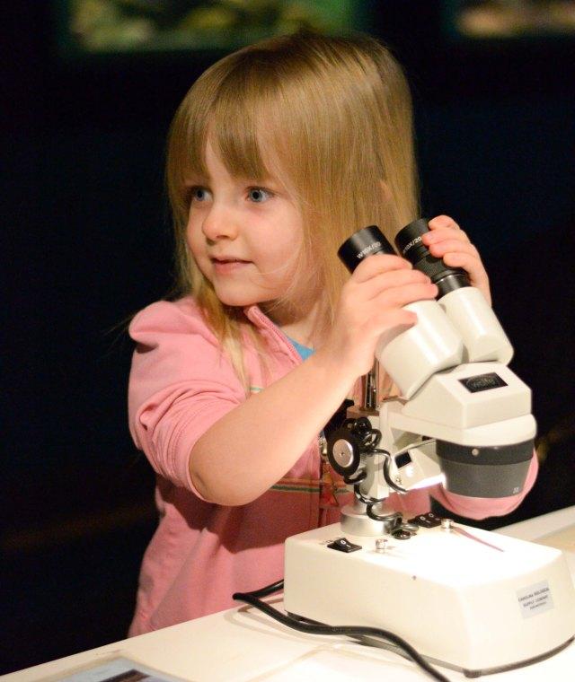 microscope-2
