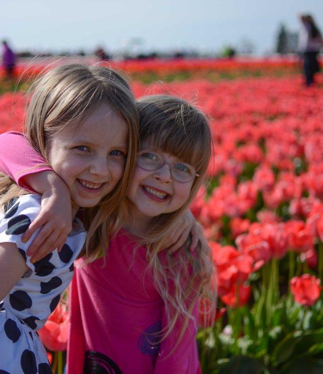 Tulips 2017-5